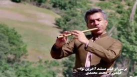 مرگ ناگهانی هنرمند جوان کردستانی