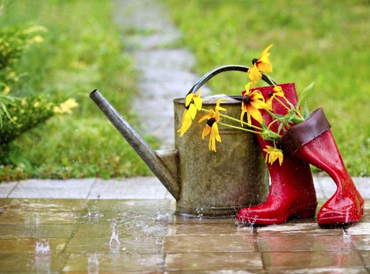 باران بهاری spring rain